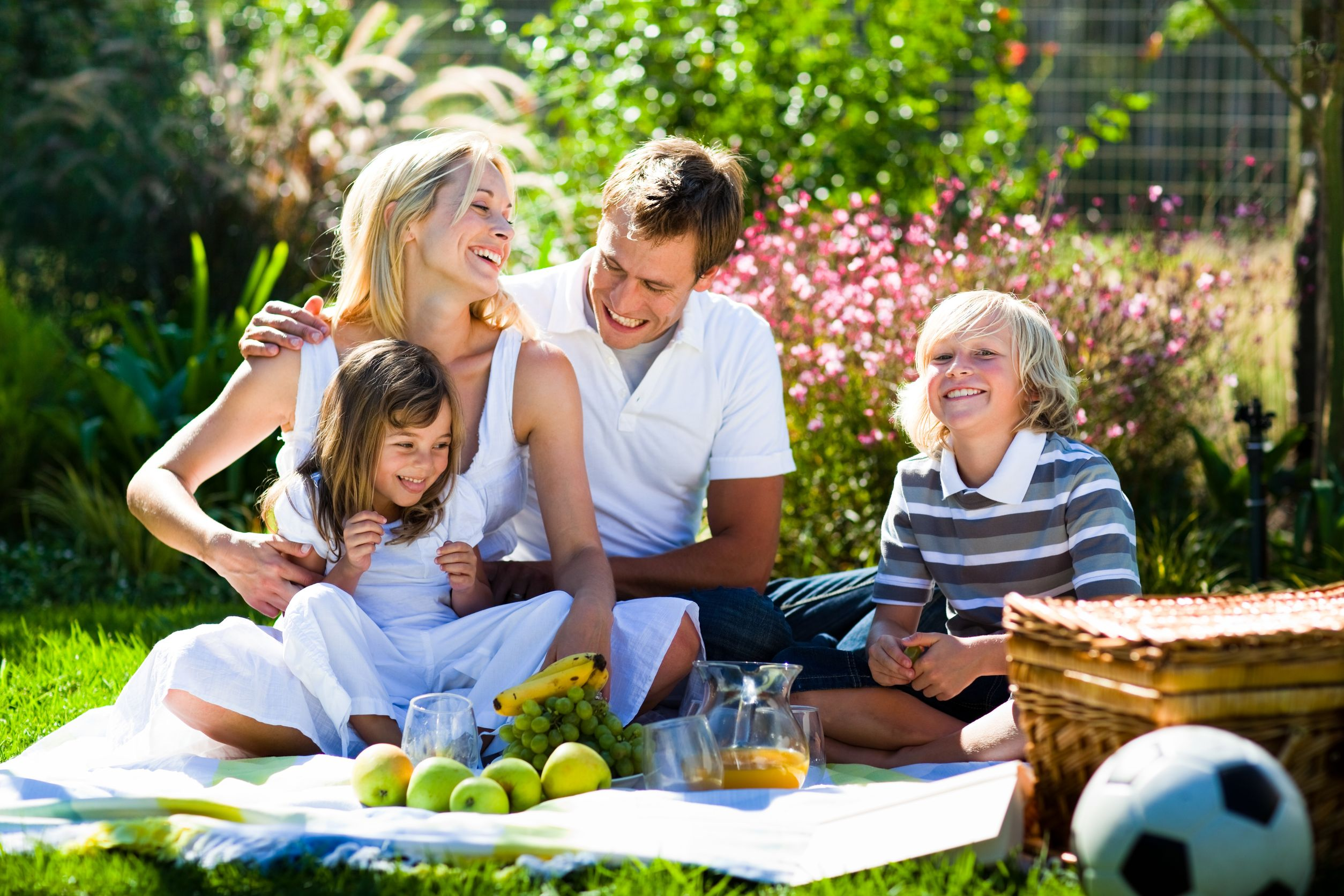 10248921_l-Happy-family-playing-together-in-a-picnic-